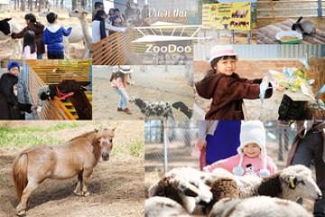 TOUR SỞ THÚ ZOODOO - NÔNG TRẠI CÚN PUPPY FARM